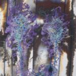Purple blooms 460px